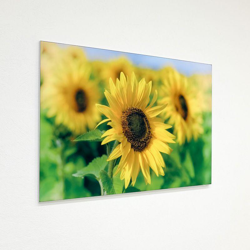 SEG interior panel / canvas panel / photo canvas